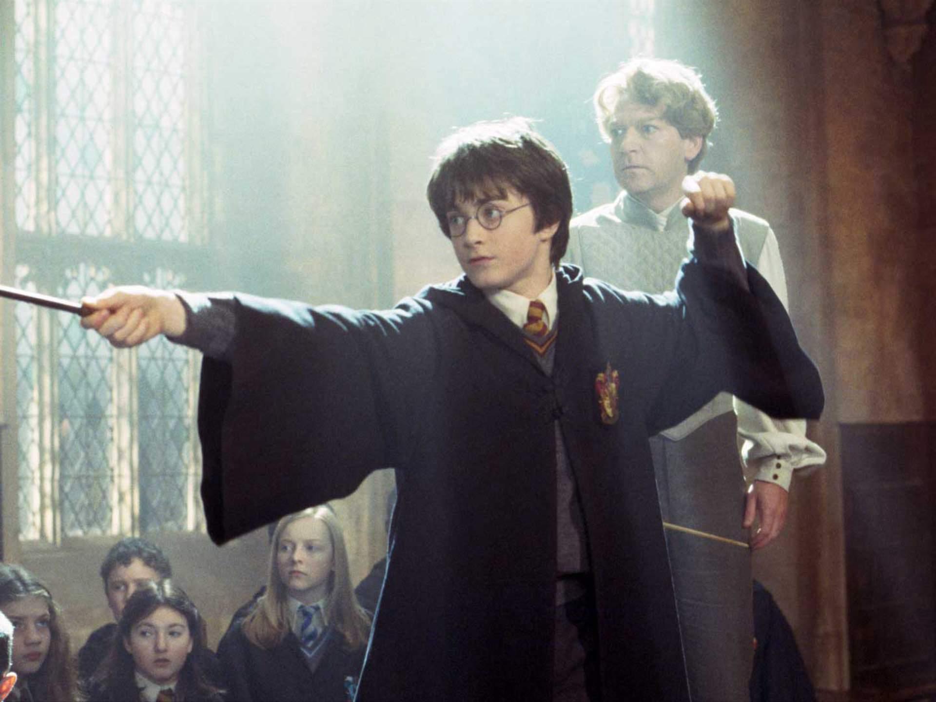 Harry Potter – [96]